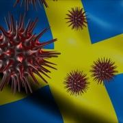 Sweden COVID-19