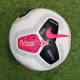 English Premier League Ball