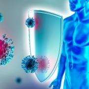 Immunity Coronavirus
