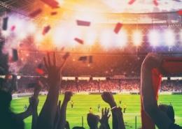 Stadium Sports Fans