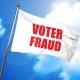 Voter Fraud Flag