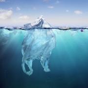 Destruction of Ecosystem